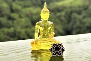 3ème Chakra Manipura