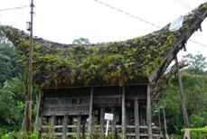 Pays Toraja Les Célèbes